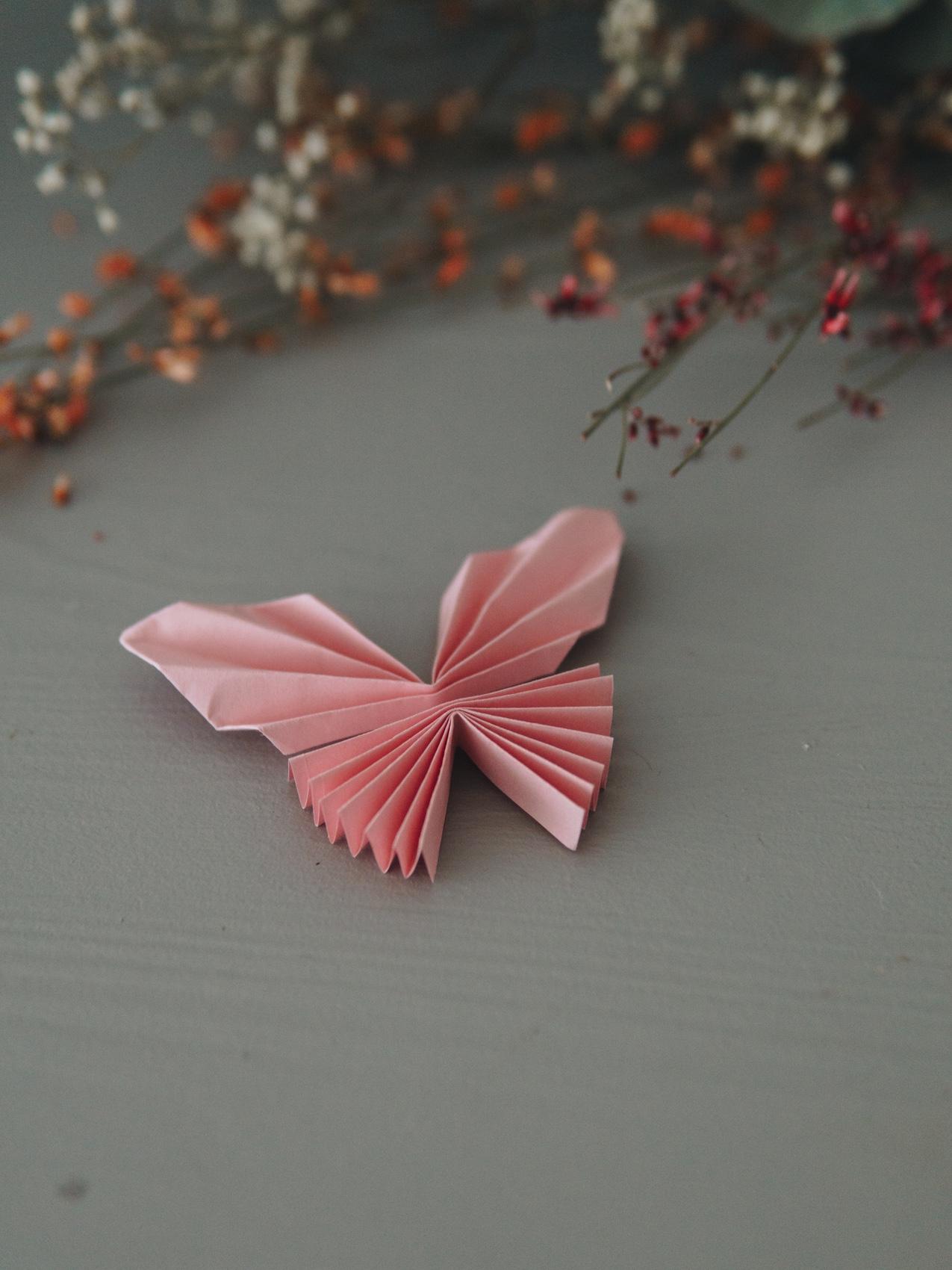 Schmetterling Du Kleines Ding Geld Falten Tutorial The Ladies