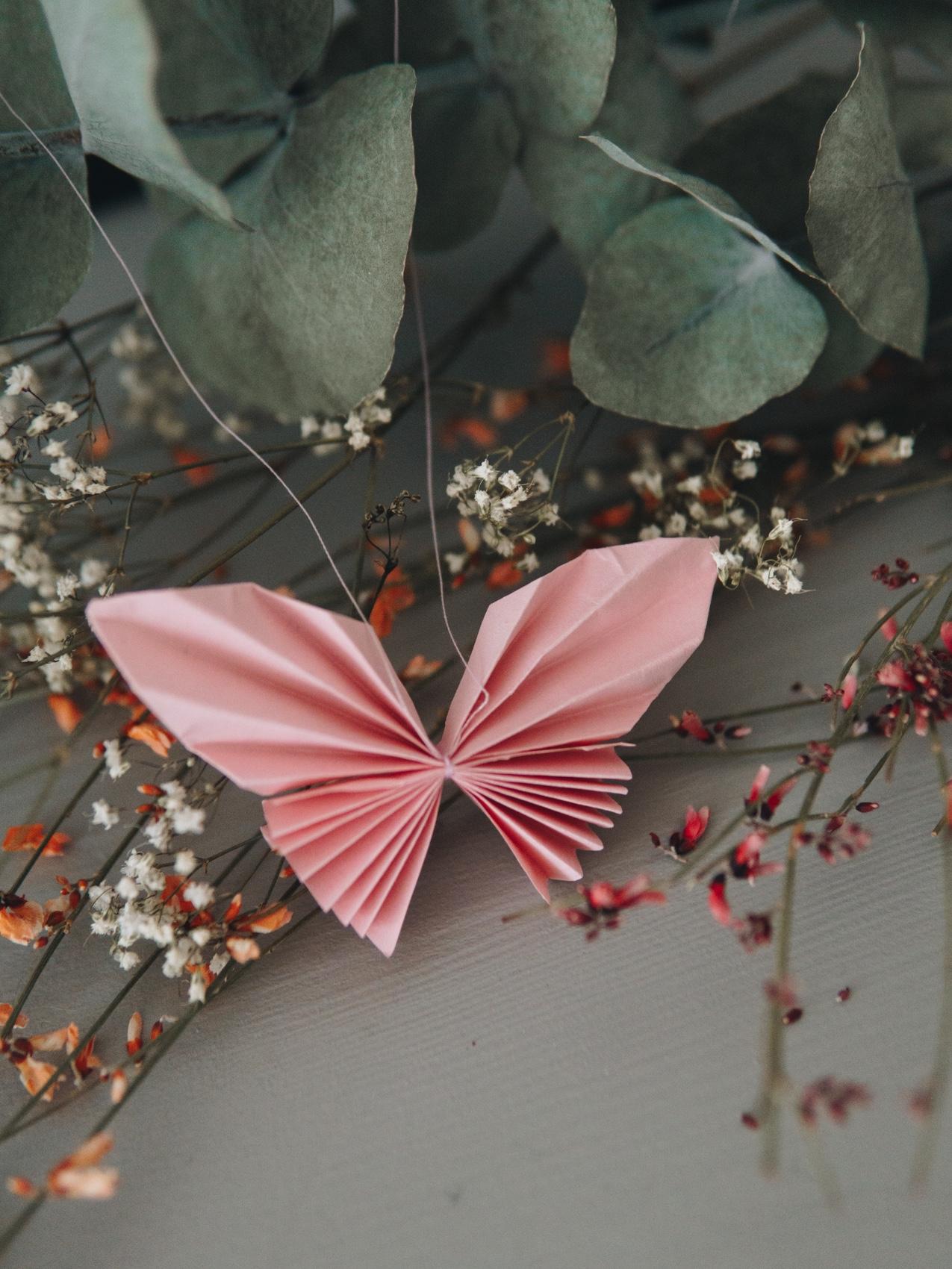 Schmetterling du kleines Ding – Geld Falten Tutorial